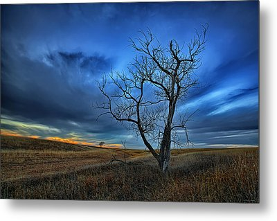 Lonely Sentinel Metal Print