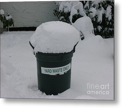 Lonely Snow Covered Trash Metal Print by Anthony Morretta