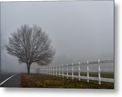 Lonely Tree Metal Print by Louis Dallara