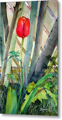 Lonely Tulip Metal Print by Betty M M   Wong
