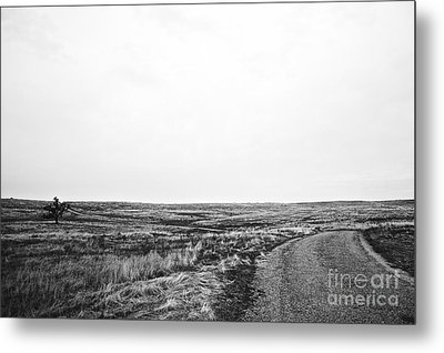 Metal Print featuring the photograph Lonesome Highway No.1 by Lennie Green