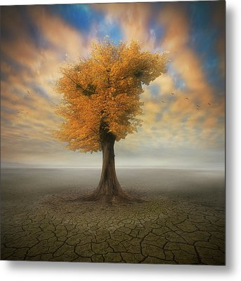 Lonesome Metal Print by Piotr Krol (bax)