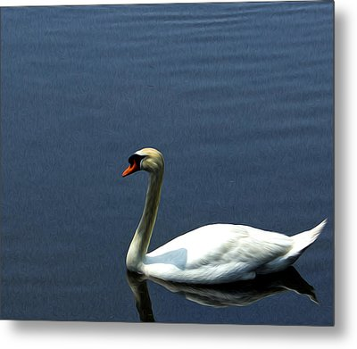 Lonesome Swan Metal Print