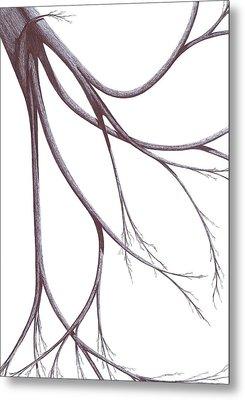 Long Branches Metal Print