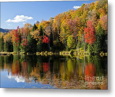 Long Pond Autumn Metal Print by Alan L Graham
