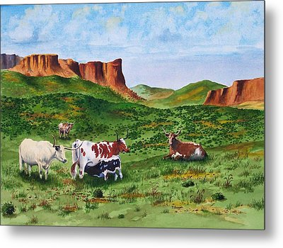 Longhorn Country Metal Print