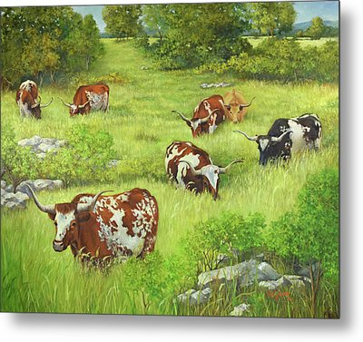 Longhorn Path Metal Print by Cheri Wollenberg