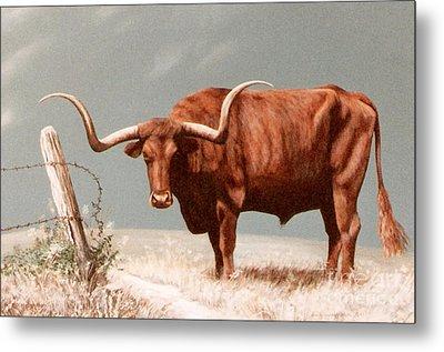 Metal Print featuring the painting Longhorn Steer by DiDi Higginbotham