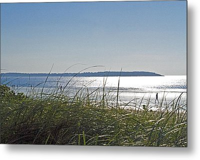 Longing For Summer Metal Print by John Hoey