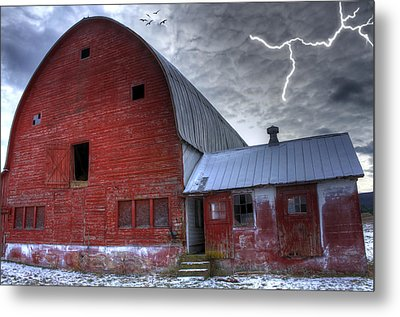 Looking For Shelter Metal Print by David Simons