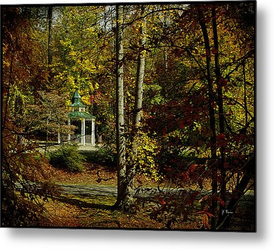 Metal Print featuring the photograph Looking Into Fall by James C Thomas
