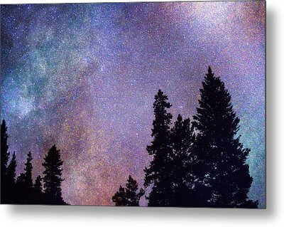 Looking Into The Heavens Metal Print by James BO  Insogna