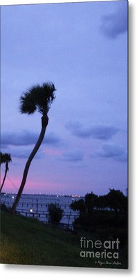 Metal Print featuring the photograph Looking North1 by Megan Dirsa-DuBois