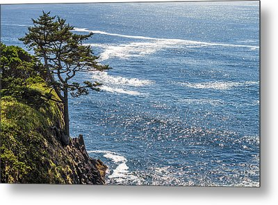 Metal Print featuring the photograph Looking Out by Dennis Bucklin