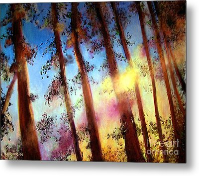 Looking Through The Trees Metal Print by Alison Caltrider