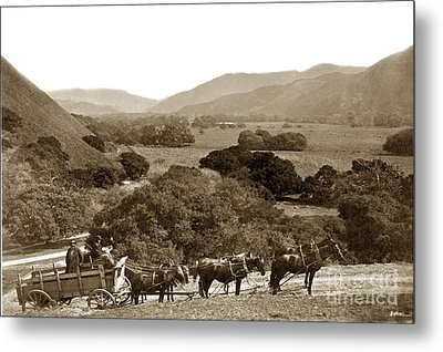 Looking Up The Carmel Valley California Circa 1880 Metal Print