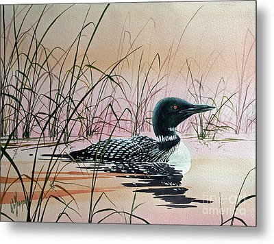 Loon Sunset Metal Print