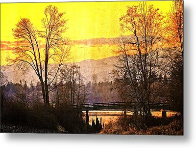 Lost Along The River Metal Print by Eti Reid