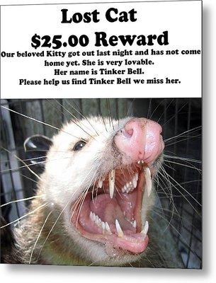 Lost Cat Cash Reward Metal Print