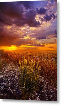 Lost In A Dream Metal Print by Phil Koch
