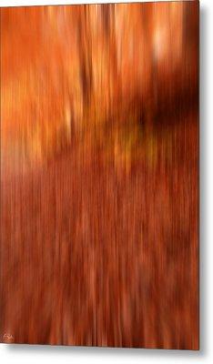 Lost In Autumn Metal Print