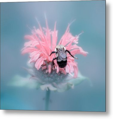 Lost In Pink Metal Print
