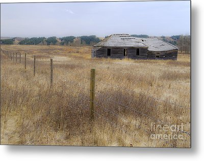 Lost In The Past Metal Print by Dee Cresswell