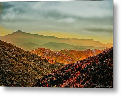 Lost In Time Metal Print by Wallaroo Images