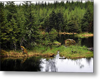 Metal Print featuring the photograph Lost In Wild Paradise 2 by Davina Washington
