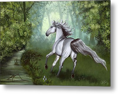 Lost In The Forest Metal Print by Kate Black