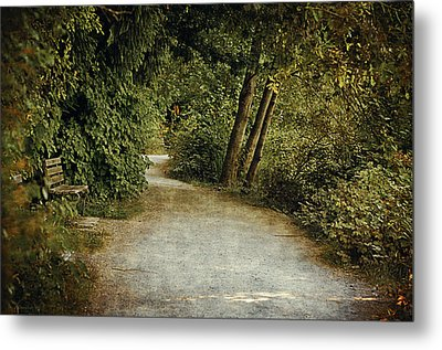 Lost Lagoon Path Metal Print by Maria Angelica Maira