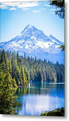 Lost Lake Morning Metal Print by Patricia Babbitt