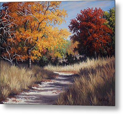 Lost Maples Trail Metal Print