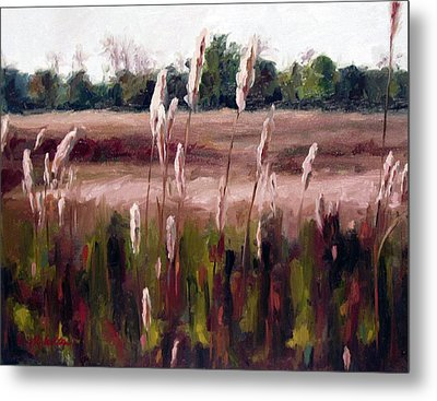 Lost On The Trail At Chickasaw Meadow Metal Print by Erin Rickelton
