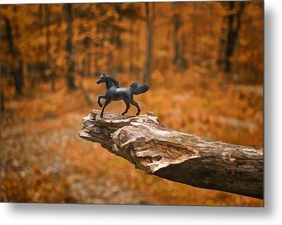 Lost Toy In The Woods Metal Print by Jeff  Gettis