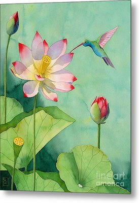 Lotus And Hummingbird Metal Print