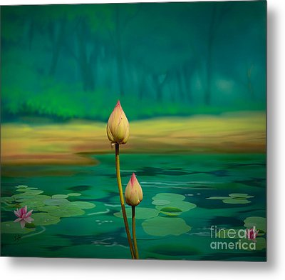 Lotus Buds Metal Print by Bedros Awak