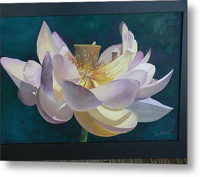 Lotus Flower Metal Print by Catherine Hamill