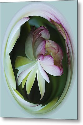 Lotus Mirror Metal Print by Jean Noren