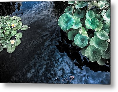 Lotus Pond Fantasia Metal Print