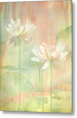 Lotus Metal Print by Robert Hooper