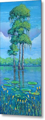 Louisiana Cypress Metal Print