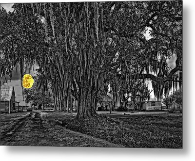 Louisiana Moon Rising Monochrome 2 Metal Print by Steve Harrington