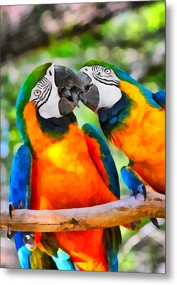 Love Bites - Parrots In Silver Springs Metal Print by Christine Till