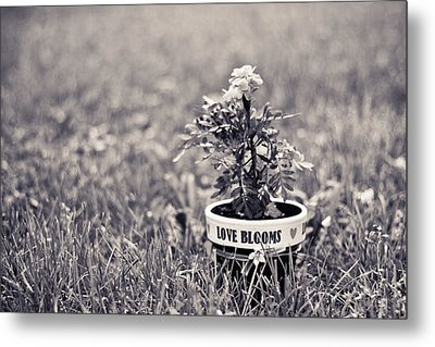 Love Blooms Metal Print by Sara Frank