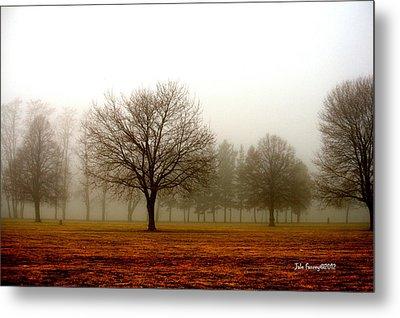 Love Foggy Mornings Metal Print
