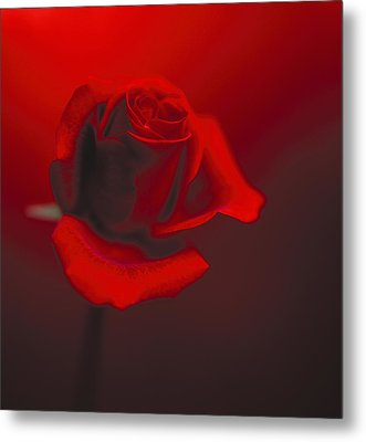 Metal Print featuring the photograph Love by Lana Enderle