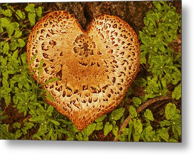 Love Of Nature Metal Print