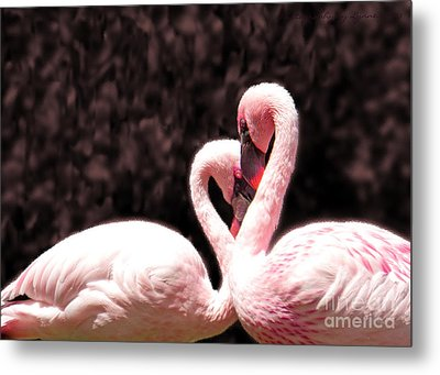 Love Of The Flamingos Metal Print by Gena Weiser