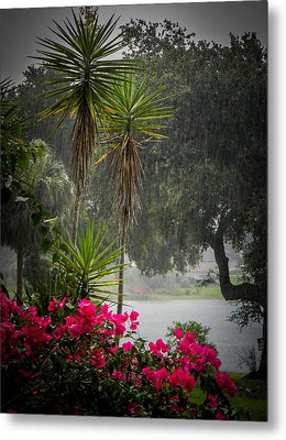 Love The Rain  Metal Print by Christy Usilton